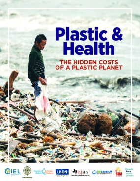 Plastic and Health: The Hidden Costs of a Plastic Planet